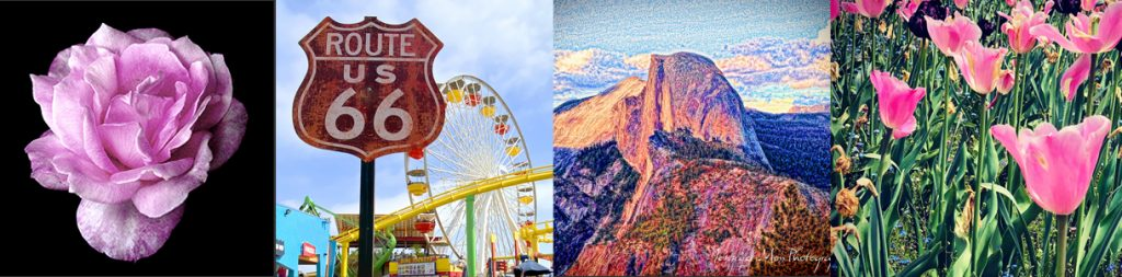 Sierra Art Trails Pieces